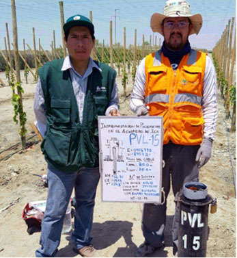 The Realization of a Telemetric Monitoring Network in Peru